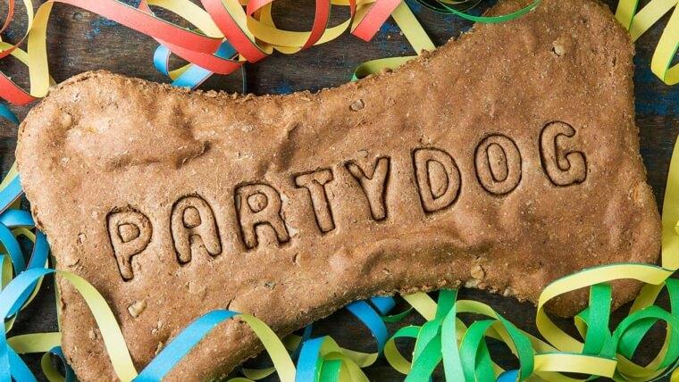 Riesenknochen Party Dog